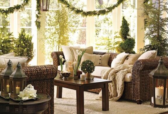 В доме не хватает уюта? Заведите комнатные растения!