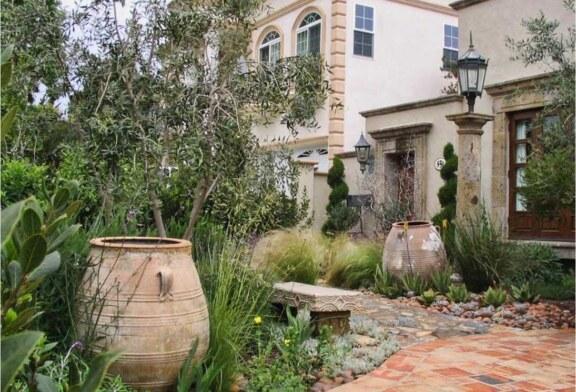 Сад в средиземноморском стиле: опыт из первых уст